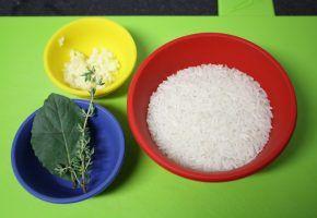 Culinária: Arroz e feijão